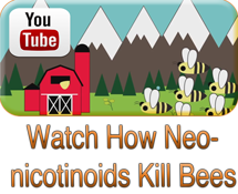 How-Neonicotinoids-Kill-Bees-6